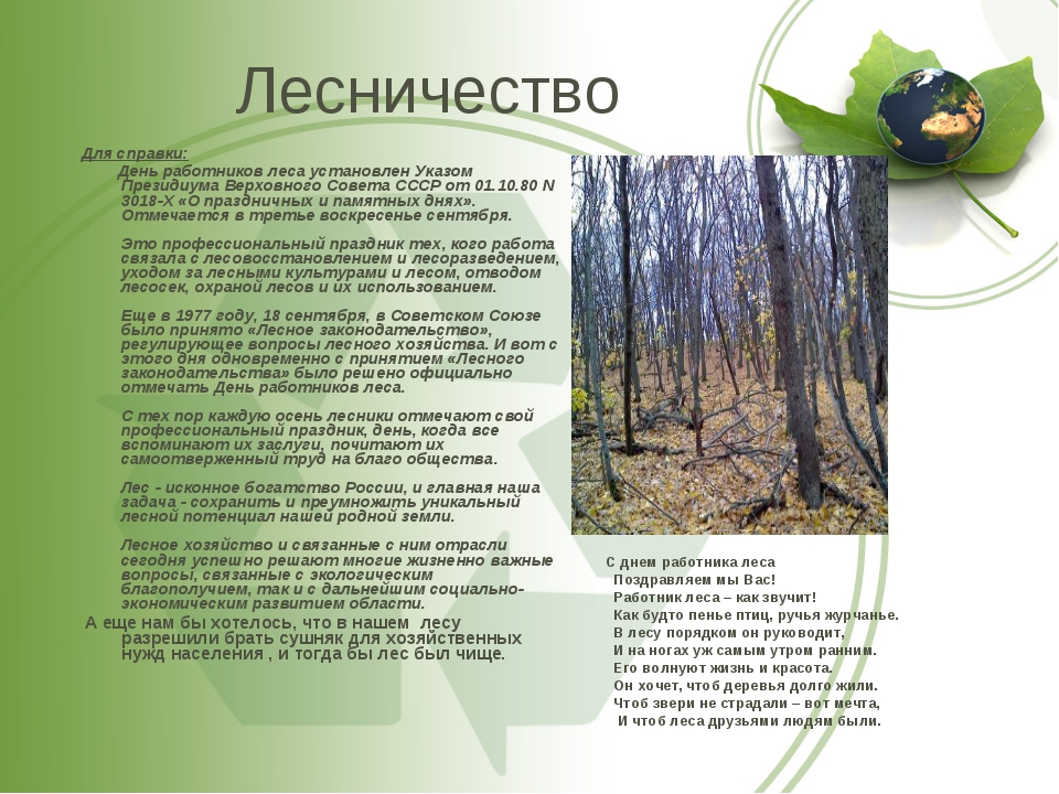 Для справки: День работников леса установлен Указом Президиума Верховного Сов...