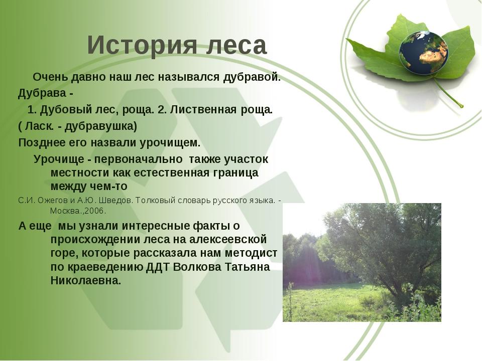 История леса Очень давно наш лес назывался дубравой. Дубрава - 1. Дубовый лес...