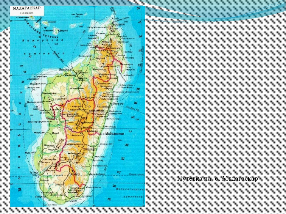 Путевка на о. Мадагаскар
