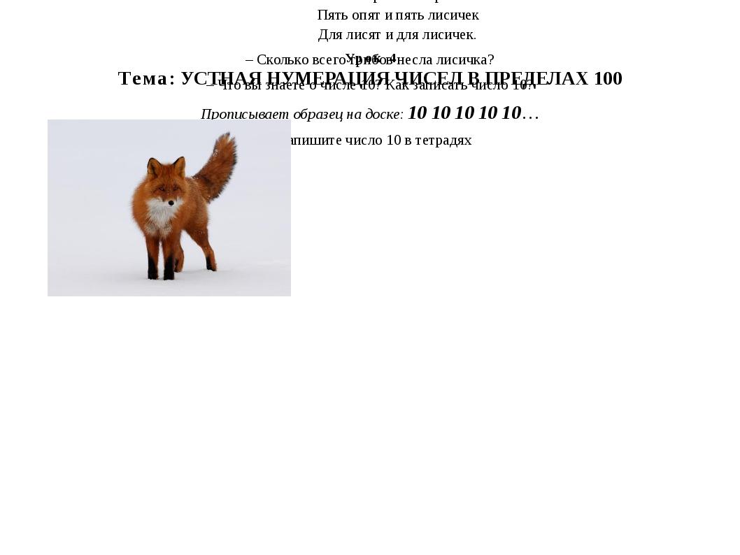Урок 4 Тема: УСТНАЯ НУМЕРАЦИЯ ЧИСЕЛ В ПРЕДЕЛАХ 100 Шла лисица вдоль тропинки...