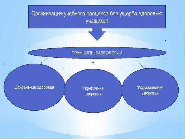 Организация учебного процесса без ущерба здоровью учащихся ПРИНЦИПЫ ВАЛЕОЛОГИ...