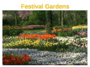 Festival Gardens Festival Gardens