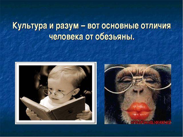 Культура и разум – вот основные отличия человека от обезьяны.