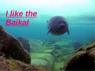 I like the Baikal