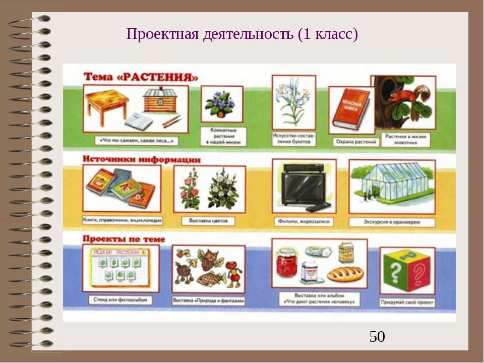 Проектная деятельность (1 класс)