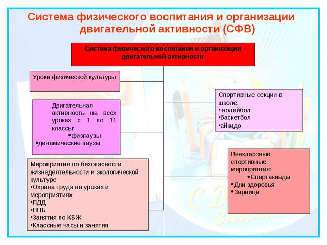 Система физического воспитания и организации двигательной активности (СФВ) Си...