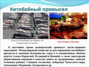 Китобойный промысел В настоящее время коммерческий промысел китовзапрещён мо