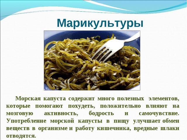 Марикультуры Морская капуста содержит много полезных элементов, которые помо...