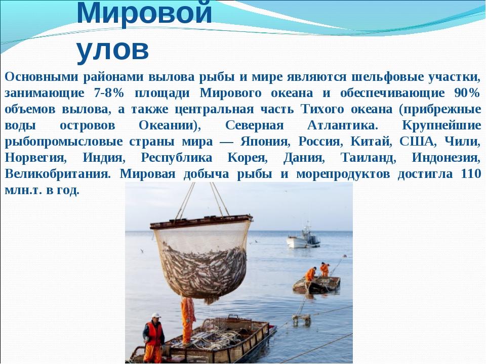 Мировой улов Основными районами вылова рыбы и мире являются шельфовые участки...