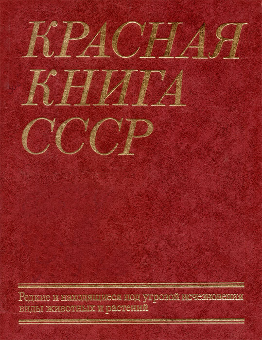http://www.rusarchives.ru/pik/events/forest/39.jpg