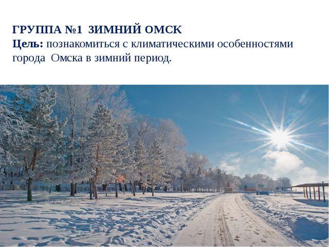 ГРУППА №1 ЗИМНИЙ ОМСК Цель: познакомиться с климатическими особенностями горо...