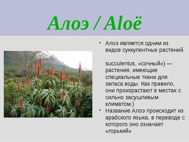 Алоэ / Aloë Алоэ является одним из видов суккулентных растений. (Суккуле́нты...
