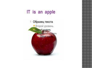 IT is an apple