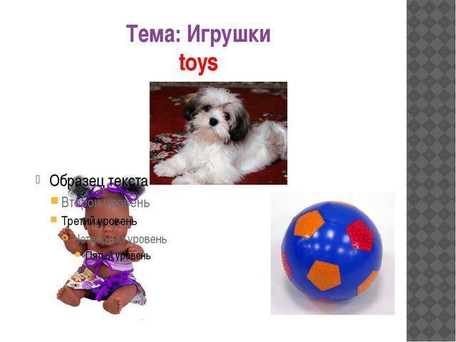 Тема: Игрушки toys