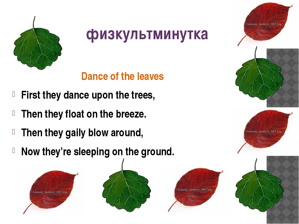 Dance of the leaves First they dance upon the trees, Then they float on the b...