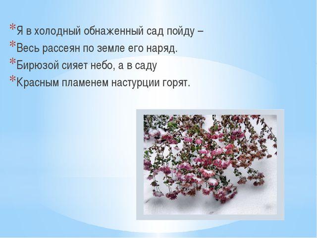 Я в холодный обнаженный сад пойду – Весь рассеян по земле его наряд. Бирюзой...