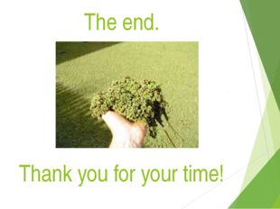 The end. Thank you for your time!
