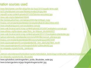 Information sources used: http://www.fishchannel.com/fish-blogs/fish-biz-buzz