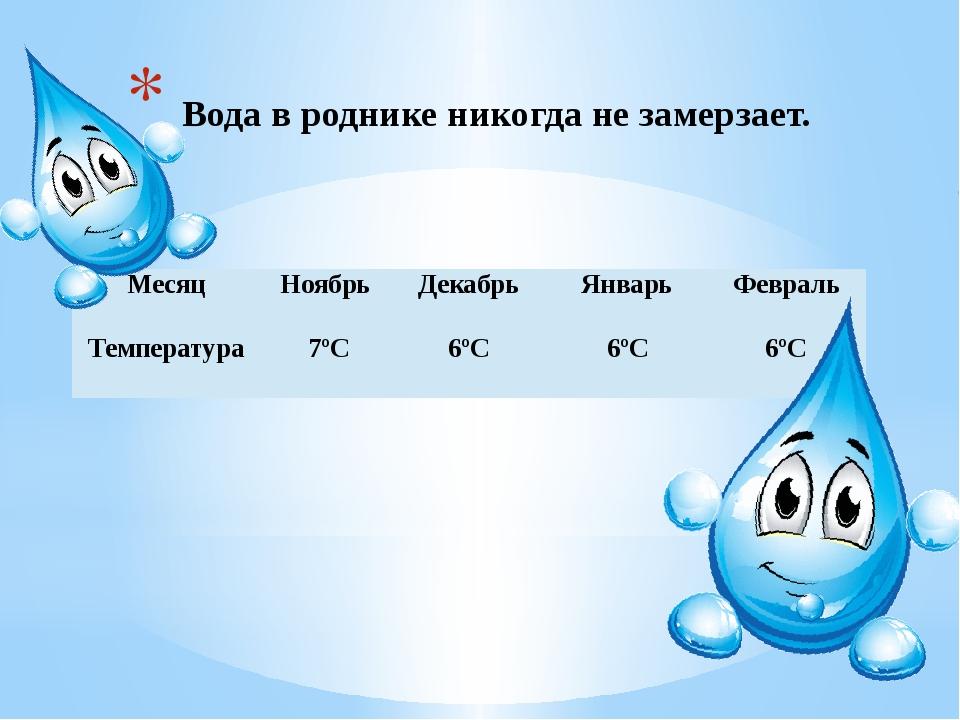 Вода в роднике никогда не замерзает. Месяц Ноябрь Декабрь Январь Февраль Тем...