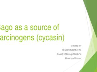 Sago as a source of carcinogens (cycasin) Сreated by 1st year student of the