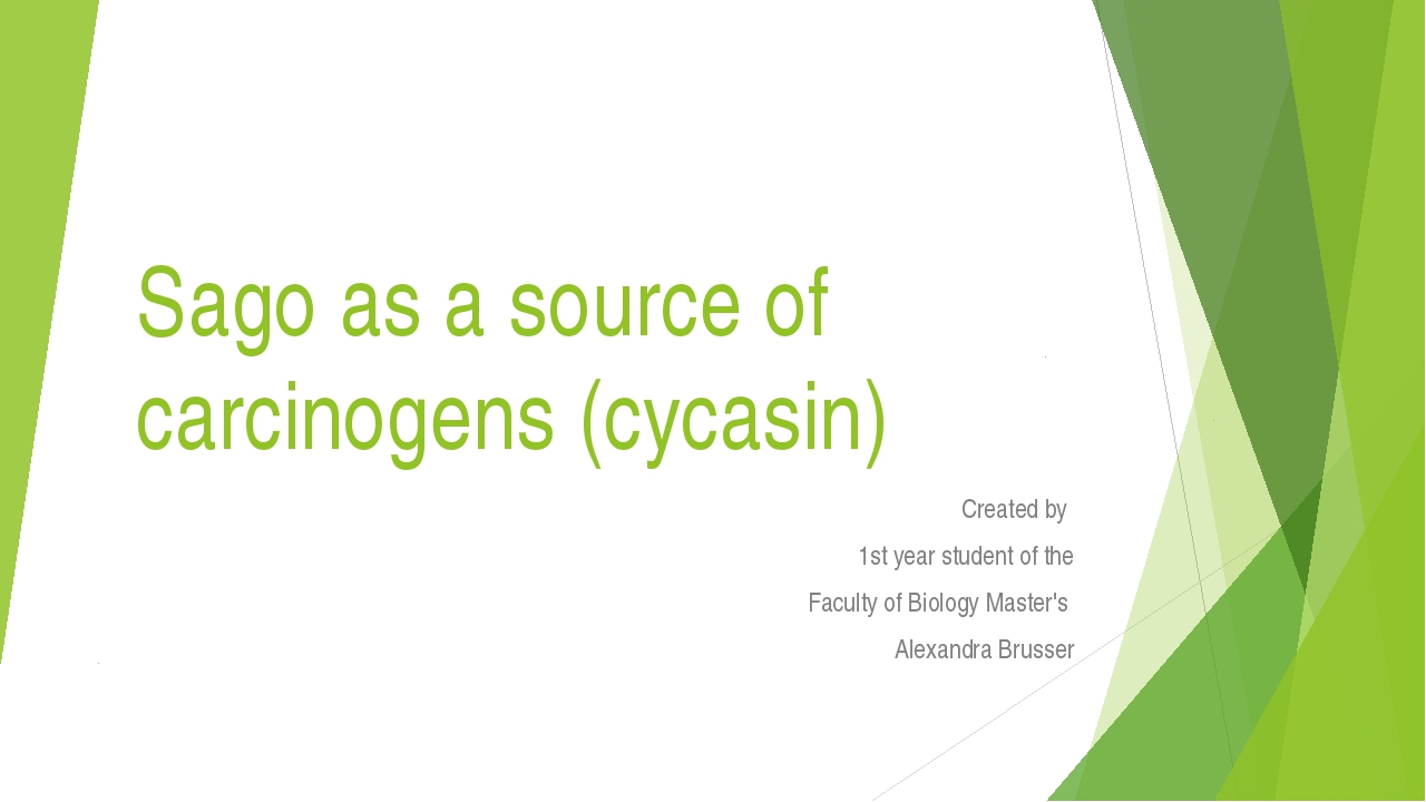 Sago as a source of carcinogens (cycasin) Сreated by 1st year student of the...