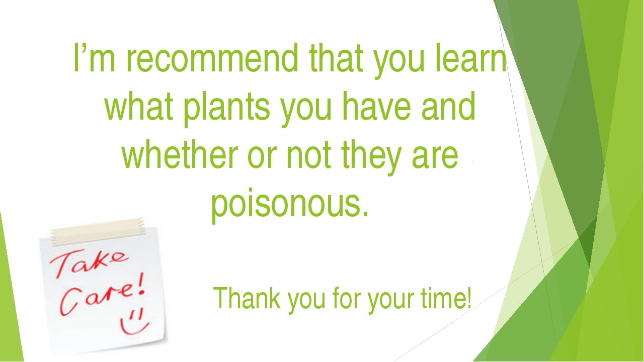 I'm recommend that you learn what plants you have and whether or not they are...