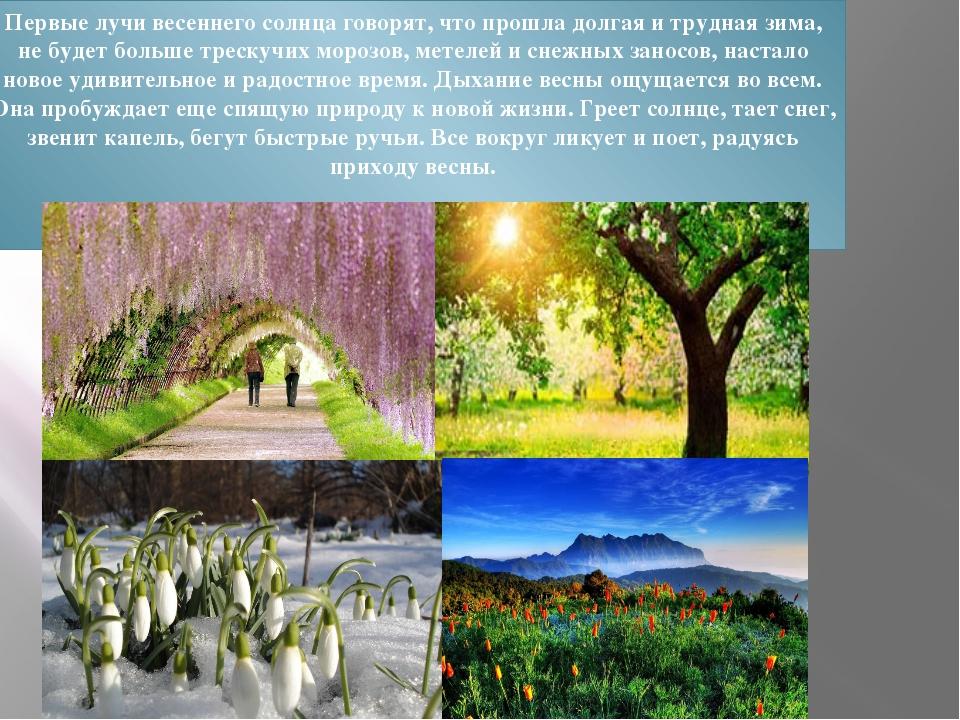 Первые лучи весеннего солнца говорят, что прошла долгая и трудная зима, не бу...