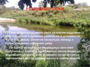 Название реки Река Медведица имеет свое название издревне, о ней говорится в