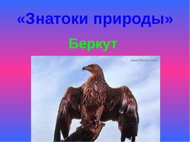 «Знатоки природы» Беркут