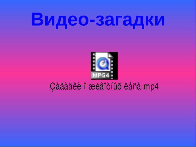 Видео-загадки