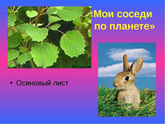 «Мои соседи по планете» Осиновый лист