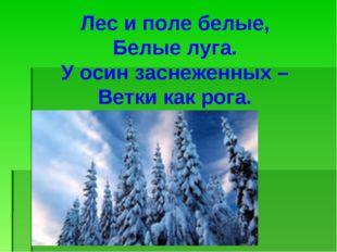 Лес и поле белые, Белые луга. У осин заснеженных – Ветки как рога.