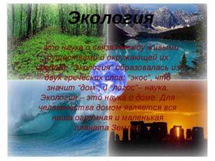 Экология – это наука о связях между живыми существами и окружающей их средой)