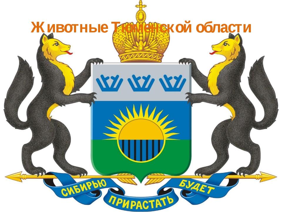 Животные Тюменской области