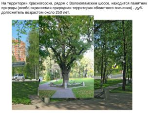 На территории Красногорска, рядом с Волоколамским шоссе, находится памятник п
