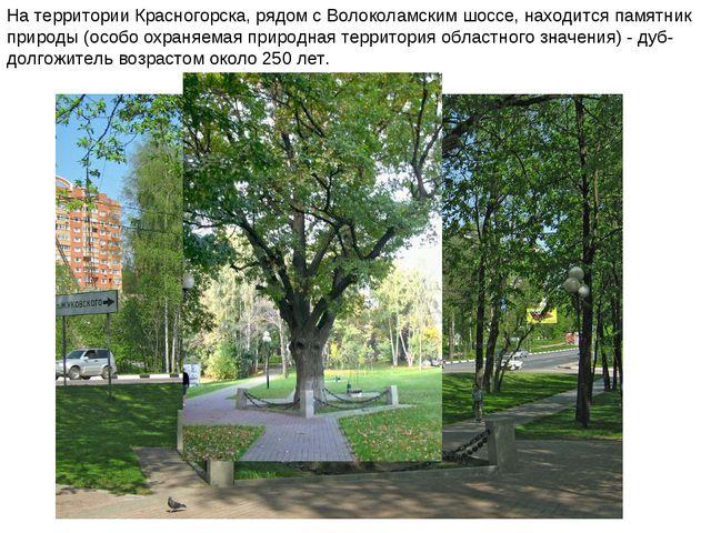 На территории Красногорска, рядом с Волоколамским шоссе, находится памятник п...