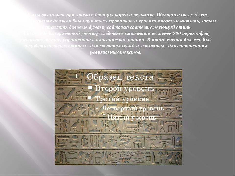 Школы возникали при храмах, дворцах царей и вельмож. Обучали в них с 5 лет. П...