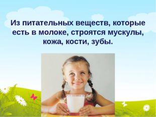 Из питательных веществ, которые есть в молоке, строятся мускулы, кожа, кости,