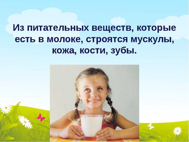 Из питательных веществ, которые есть в молоке, строятся мускулы, кожа, кости,...