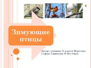 Автор : ученица 11 класса Морозова Софья. Гимназия № 69 г.Омск