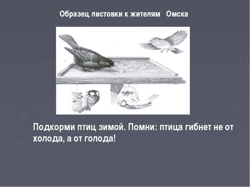Образец листовки к жителям Омска Подкорми птиц зимой. Помни: птица гибнет не...