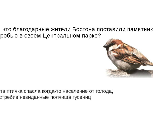 Почему жители Памира и Гималаев не употребляют в пищу такое столь уважаемое н...