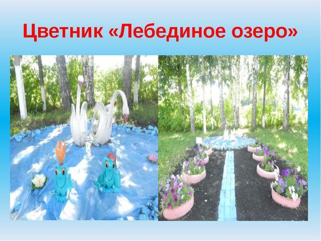 Цветник «Лебединое озеро»