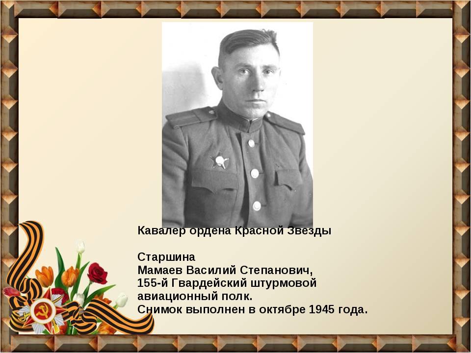 Кавалер ордена Красной Звезды Старшина Мамаев Василий Степанович, 155-й Гвард...