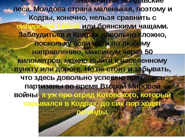 Кодры – знаменитые молдавские леса. Молдова страна маленькая, поэтому и Кодр...