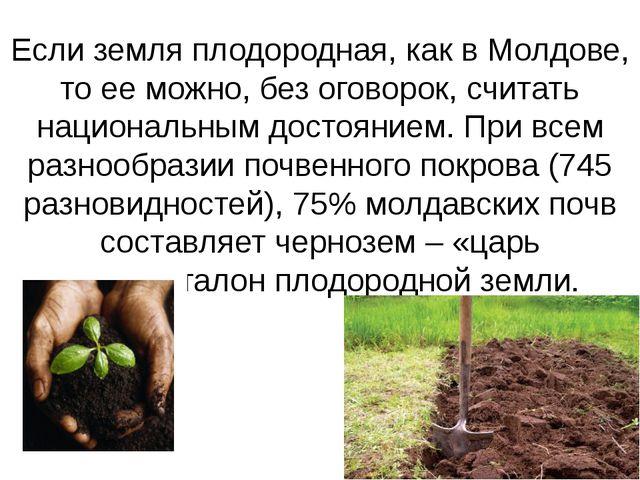 Если земля плодородная, как в Молдове, то ее можно, без оговорок, считать нац...