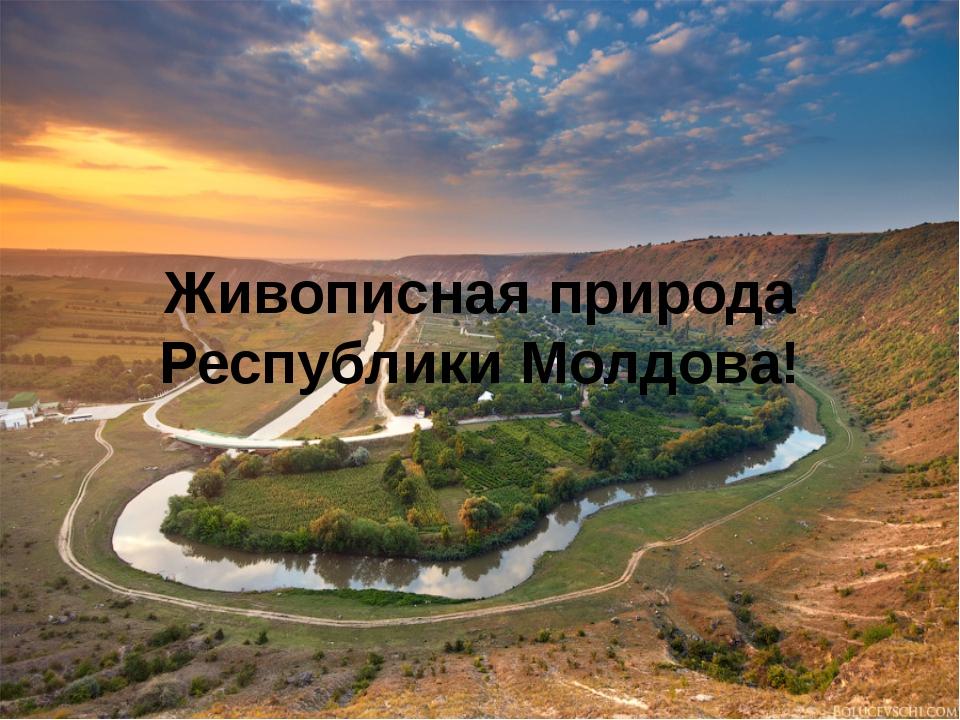 Живописная природа Республики Молдова!