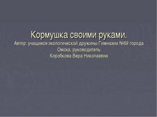 Кормушка своими руками. Автор: учащиеся экологической дружины Гимназии №69 го