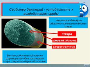 Какими свойствами должны обладать бактерии, чтобы населять разные среды жизни