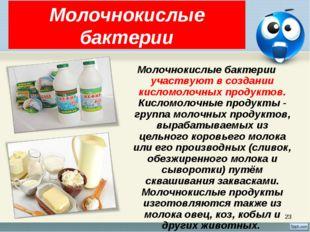 * Молочнокислые бактерии Молочнокислые бактерии участвуют в создании кисломол